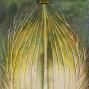 Liliom tempera vászon 2020  48x105 cm        250 000.-Ft