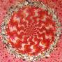 Szivesség, festőiség, tagság 2011 140x140cm